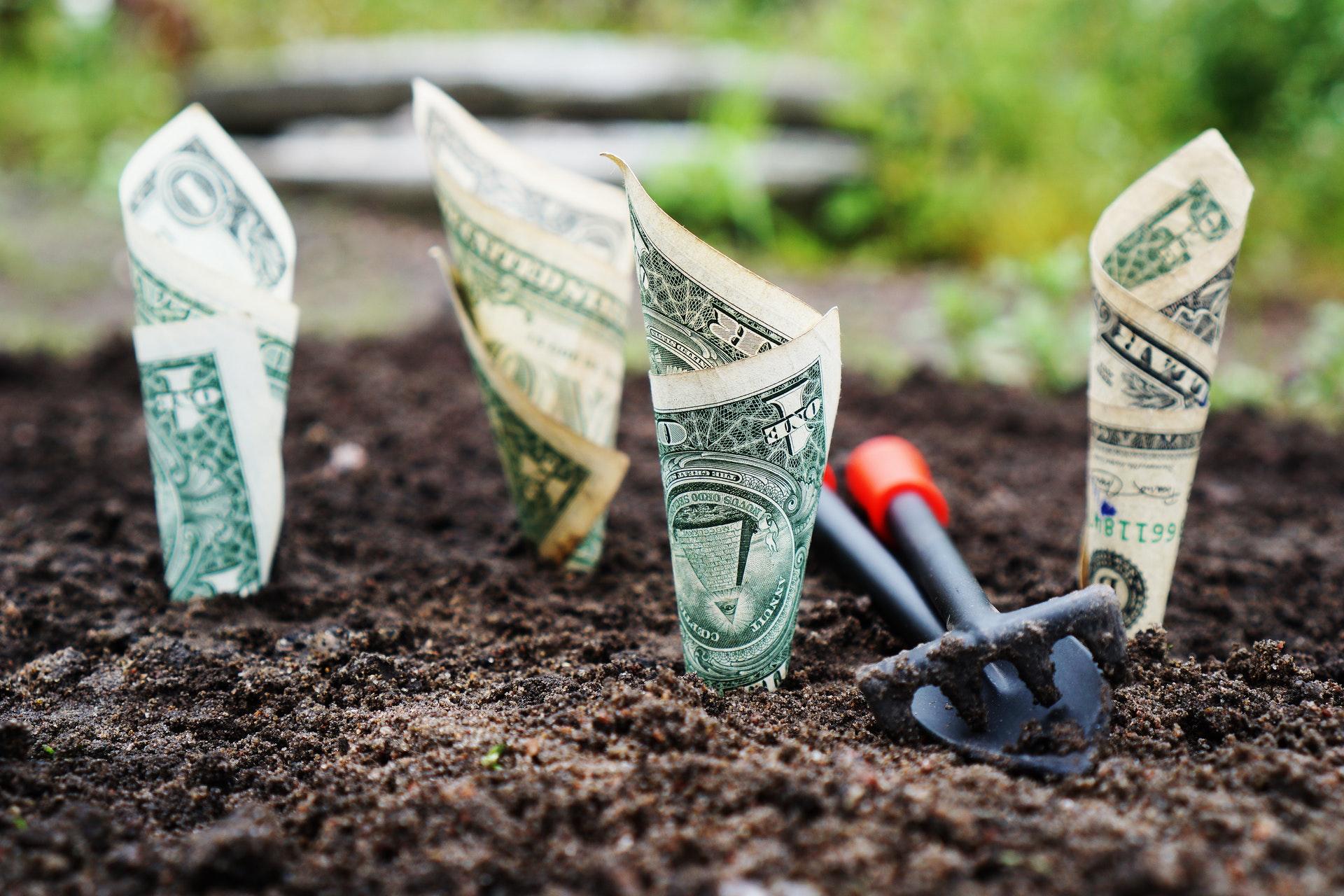 ¿Cuánto vale mi startup?